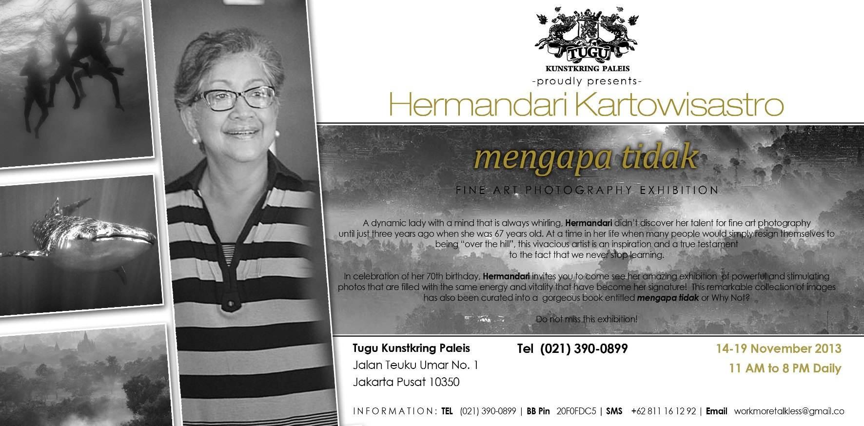 "hermandari kartowisastro ""mengapa tidak"" - fine art photography exhibiton at tugu kunstkring paleis"