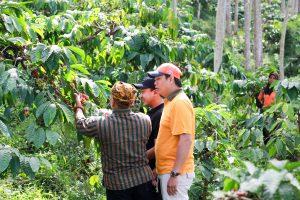 Coofee Journey - Kawisari Coffee Plantation - Coffee Tour