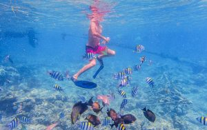 Midterm School Holiday with Hotel Tugu Bali or Lombok